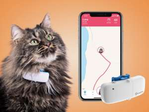 Tractive Ikati GPS-tracker til katt Image