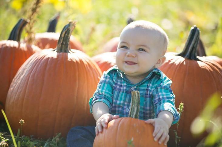 Maryland Pumpkin Patch