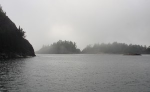 August 12 Morning fog at Sinclair Cove