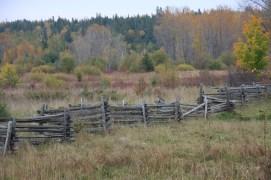 October 12 More zig-zag fences