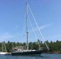 August 27 Gaviidae at anchor in Thomas Bay (near Killarney ON)