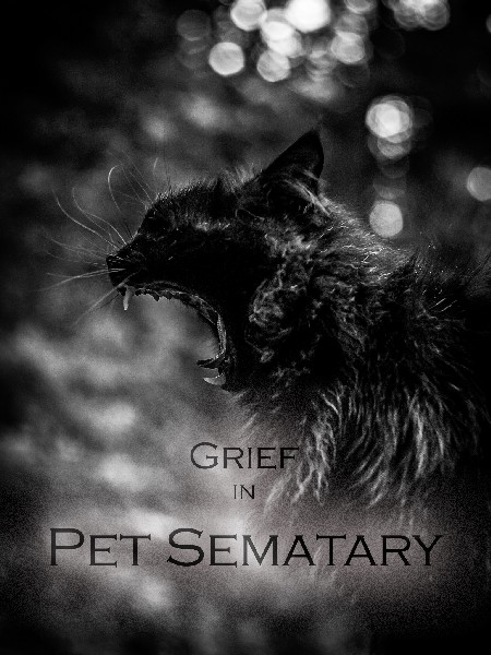 Grief in Pet Sematary