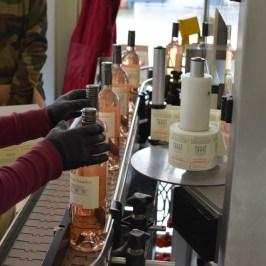 Bottling rosé - 052