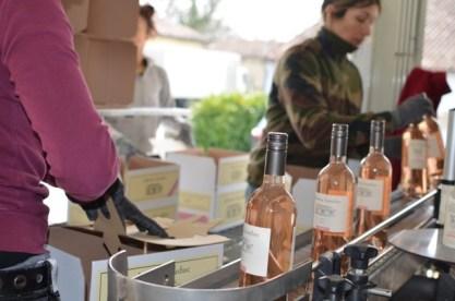 Bottling rosé - 148