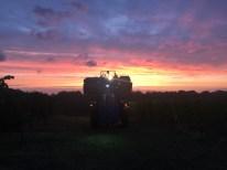 Harvest machine on a Sunday