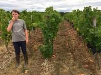 Tom tasting grapes