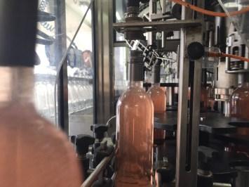 The Bottling - 10 of 36