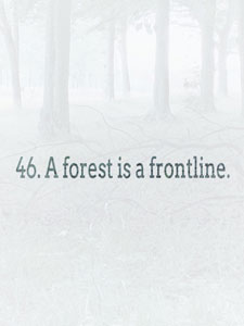 text art quote a forest is a frontline light blue forest image