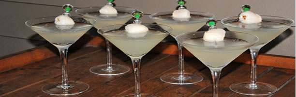 Exotic Cocktail Recipes - Lychee Martini