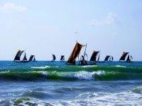Negombo, Sri Lanka Attractions: Negombo Fishing Boats
