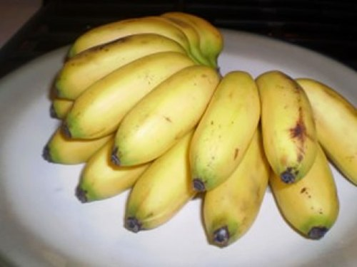 Types of Bananas: Baby/Nino Banana