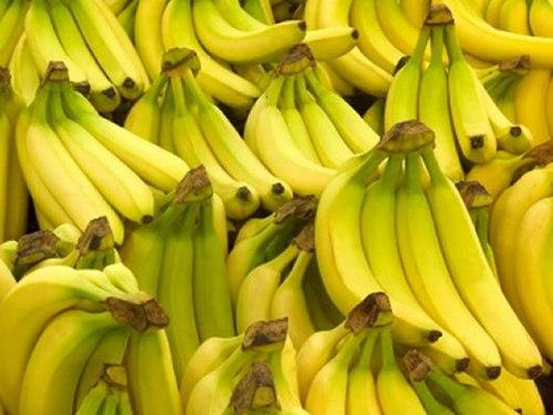 Types of Bananas: Cavendish Banana