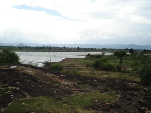 Water bank at Udawalawe National Park