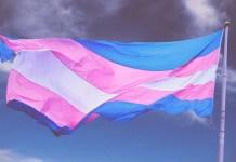 Isolamento não contempla pessoas trans