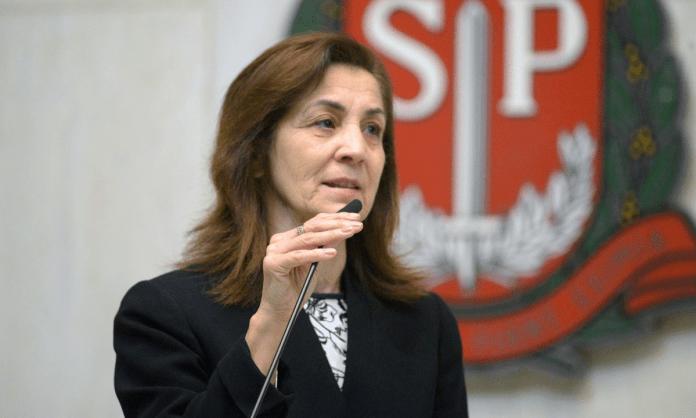 """Deputada paulista quer proibir propaganda LGBTQIA+ para """"proteger crianças"""""""