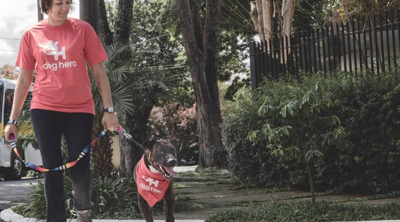 Benefício é válido para passeios com duração de 30 minutos e tem o objetivo de incentivar pais de cachorro a colocarem seus filhotes peludos para se exercitar