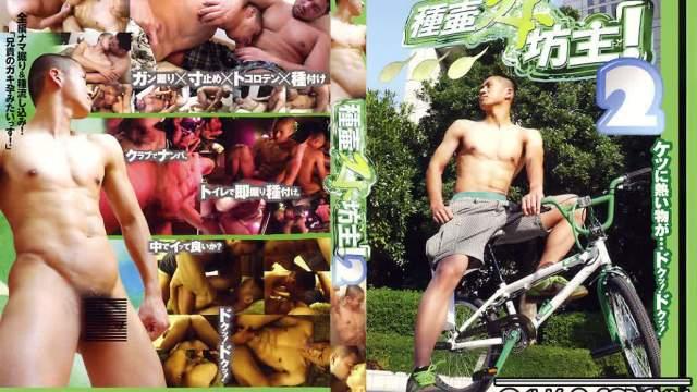 【KON8】種壷スト坊主 2