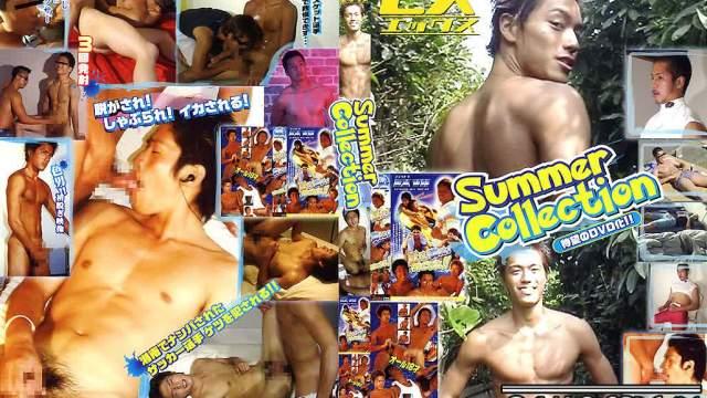 【JPN135_A】EX Summer Collection