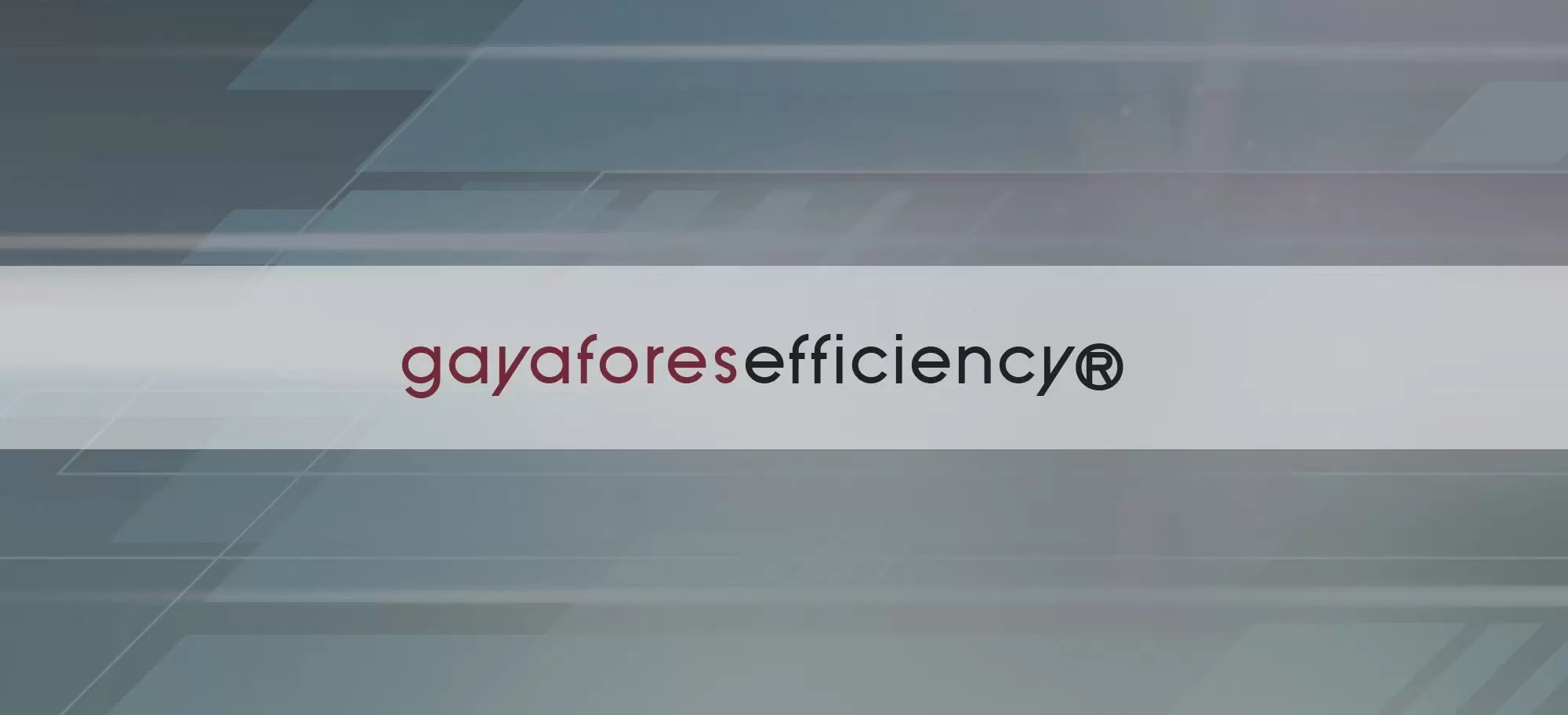 Cabecera Efficiency