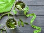 Fakta Teh Hijau untuk Diet