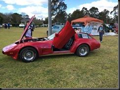42nd annual  GM Display Penrith Sydney GAYCARBOYS (36)