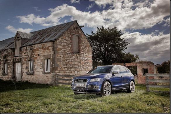 Audi SQ5 TDI  gaycarboys (3)