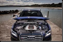 Audi SQ5 TDI  gaycarboys (5)