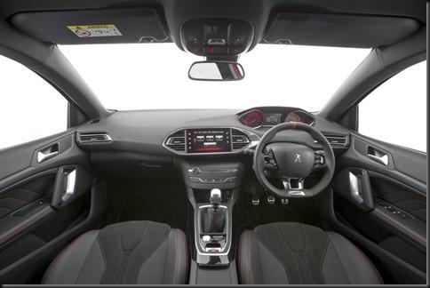 308 GTI 270 gaycarboys (7)