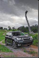Subaru Forester GayCarBoys (1)