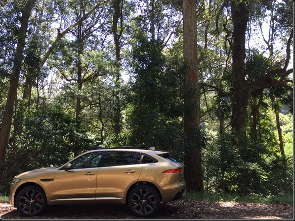 jaguar-fpace-supercharged-v6-gaycarboys (15)