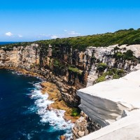 Top Driving Roads Around Sydney: The Royal National Park