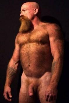 Ginger 6
