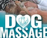 Canine Massage Therapy Rescued Tails