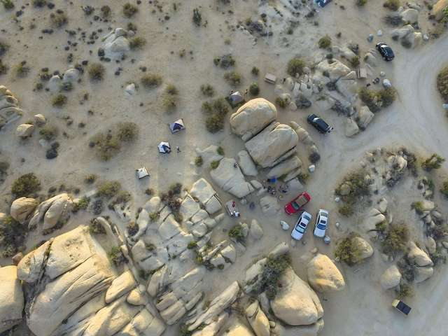 Joshua Tree National Park Camping