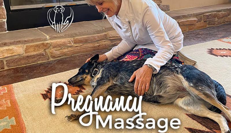 Pregnancy Massage Zoe