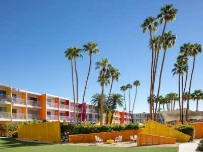 Jacinto Lawn Saguaro Palm Springs