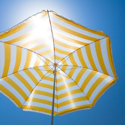 Living in the Summer Sunshine