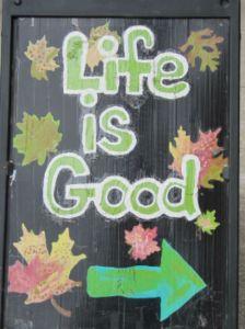 Life is good - blog