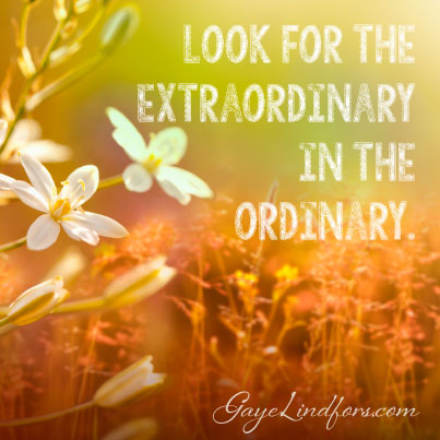 Look For The Extraordinary