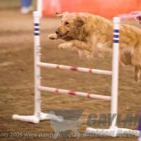 devon_jump