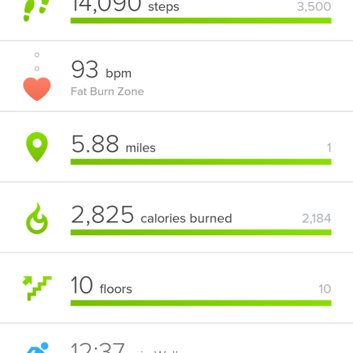 I walked SO MUCH. It was fantastic.
