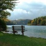 bench-lake