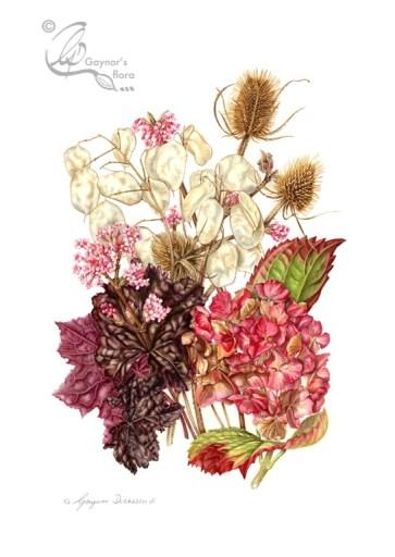'Flowers from my Winter Garden'