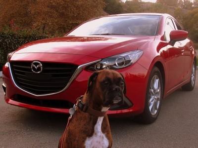 2014 Mazda3 with Roxy Hamel