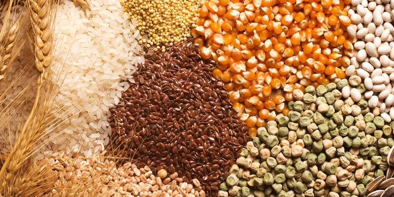 Рекомендации по соблюдению обязательных требований при продаже, использовании и производстве семян полевых культур