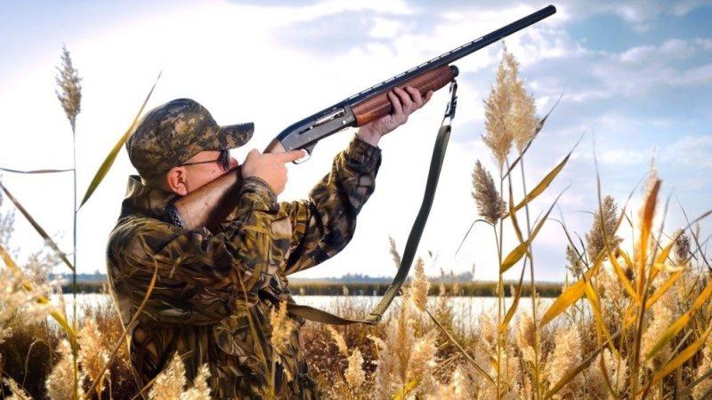 ОНФ просит пересмотреть новые Правила охоты, разработанные Минприроды РФ