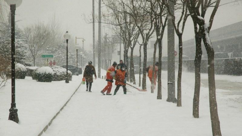 Штормовое предупреждение объявлено в Алтайском крае на 24-25 февраля