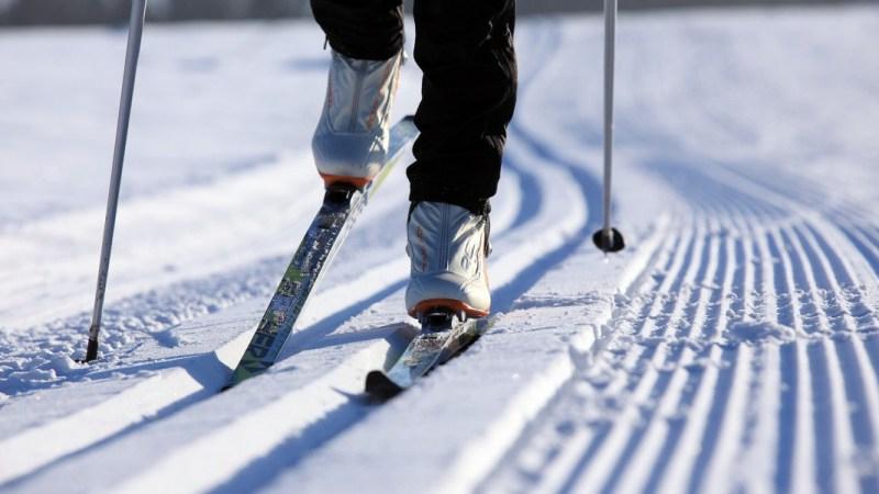 Лыжня в «Орленке» не пустует