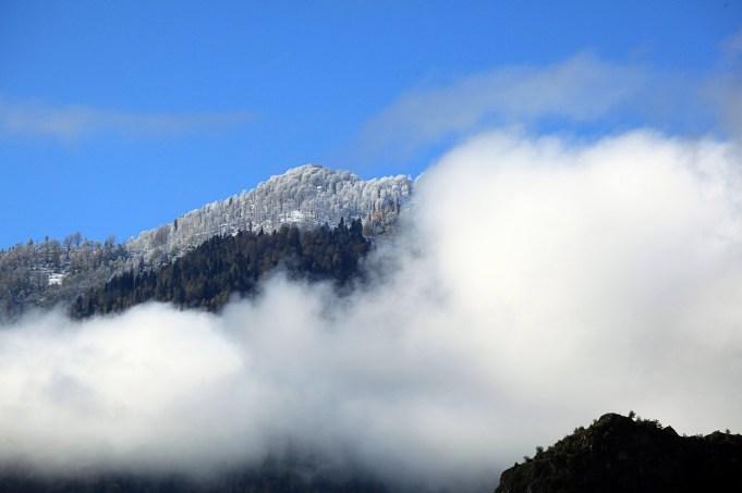 Kadriye Sermin Bozkır - Papart Ormanı ve Karçal Dağları