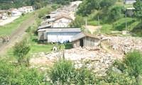 Margem da linha férrea no Umbará continua ocupada com moradores